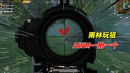 乌鸦玩游戏:和老撕鸡打雨林地图,缴获一把AWM一枪一个轻松吃鸡