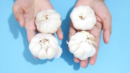 原来大蒜这样保存,不发芽不干瘪,方法超级简单,又学会一招