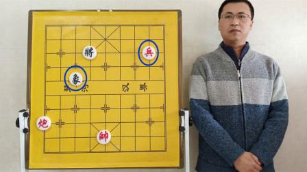 象棋残局:炮低兵妙擒单象?要点只有一个,知道就必胜,不知道就必和,定式杀法的分水岭,唯一关键点