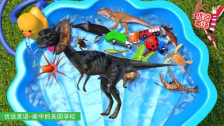 认识23种动物和玩具汽车,恐龙海洋动物和陆地动物