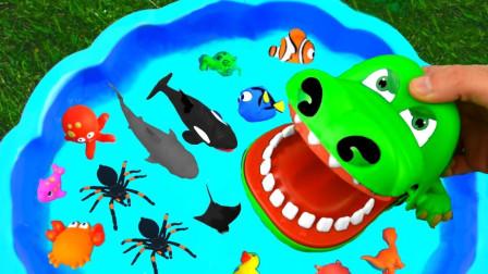 超益智!小熊姐姐教你两分钟学习各种颜色!小猪佩奇趣味玩具故事