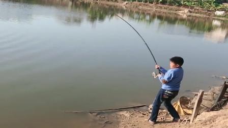 生活在农村里的小朋友就是厉害,用海竿钓了一条大罗非,又能给爸爸整个下酒菜了