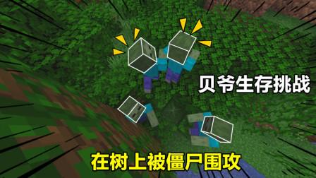 我的世界贝爷生存01:开局只有三颗心,夜晚被迫在树上度过!