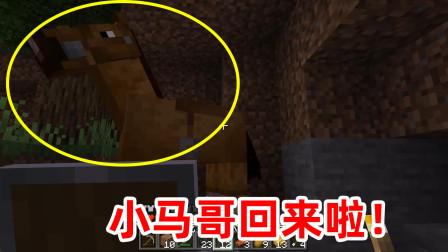我的世界04:为了挖矿我全副武装,消灭完怪物出来就遇到大惊喜!