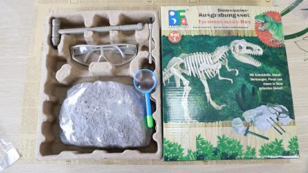 化石挖宝盲盒,真的能挖到恐龙化石吗?孙少奇今天运气怎么样?