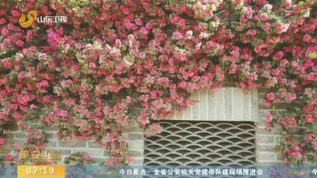 早安山东 2019 记者带你青砖红墙中拍出怀旧老照片