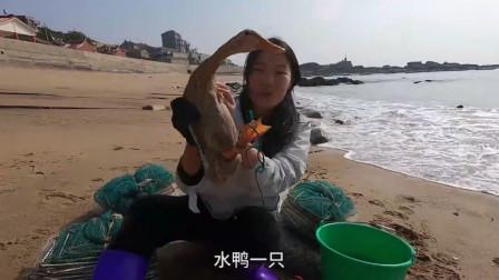 """赶海小妹来海边收地笼,意外抓到一只""""海鸭"""",引不少路人围观"""