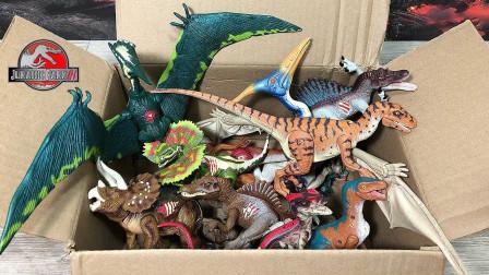 恐龙玩具开箱发现翼龙迅猛龙棘背龙