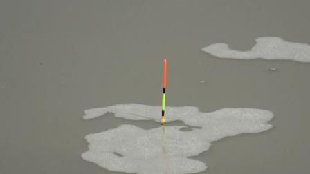 钓鱼:桥墩旁边回水湾,每竿上的鱼还都不一样呢!