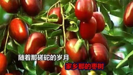 舞台背景  红枣树