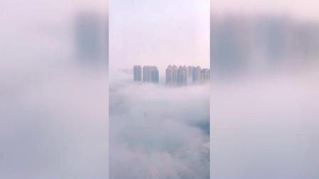 山东省发布今冬首次大雾红色预警信号 十几层楼高的大雾贴着地面飘浮