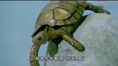 凡间干旱,仙界在享乐,女子用血喂婴儿,小金龟一个举动救了凡人