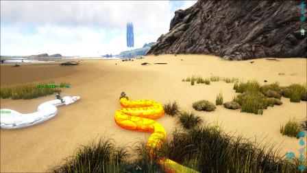 方舟生存进化:VS系列火冰蟒蛇赛跑燃烧姐认为是黄金蟒蛇