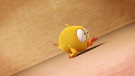 小鸡jaki:小鸡好像在一个箱子里,被翻来覆去的摔