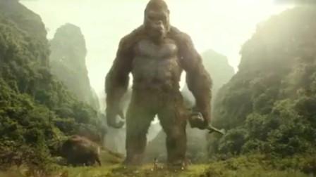 金刚骷髅岛金刚不愧是守护神看到被压垮的巨兽立刻伸出援手