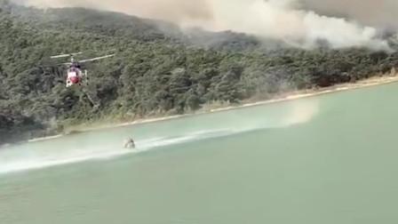 7架直升机、4000余人四天施救 佛山高明山火外线明火基本扑灭