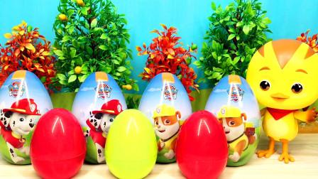 萌鸡小队麦奇拆狗狗惊喜蛋奇趣蛋变形玩具