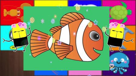 认识小丑鱼等12种海洋动物,小马识动物