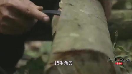 老广的味道:清明至立夏是采摘肉桂的好时节,一把牛角刀,当地人用了几十年