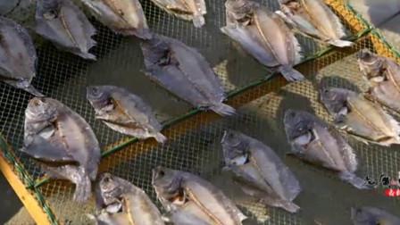 老广的味道:金黄比目鱼干在老广手中化为鱼粉,这也是汕尾人最喜爱的调味品