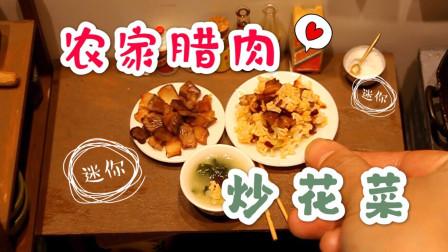 迷你厨房自制腊肉,做出一桌子家常便饭,做饭跟玩似的还挺别致