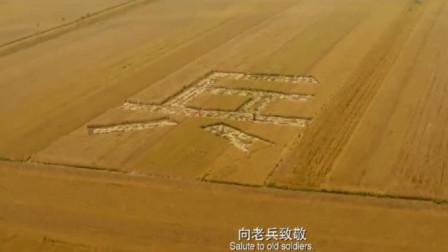 目标战:老兵看见自己连队,用麦田割出兵字,战友请求飞机下降
