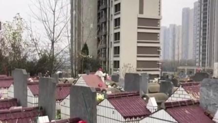 湖北一楼盘距墓地仅一墙之隔 回应:交房时应该就搬走了