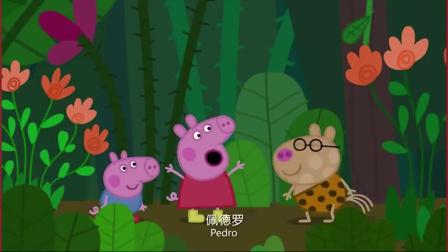 小猪佩奇:佩奇在丛林里玩的很开心,可是她还是喜欢公园里的泥坑