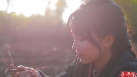 农村姑娘李子柒被央视点名表扬,她凭一颗黄豆火遍全球,厉害了