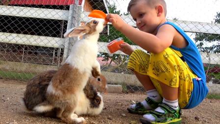 萌娃小可爱们去到了一座有趣的儿童农场,遇到了萌萌的小兔子,萌娃:请你吃胡萝卜