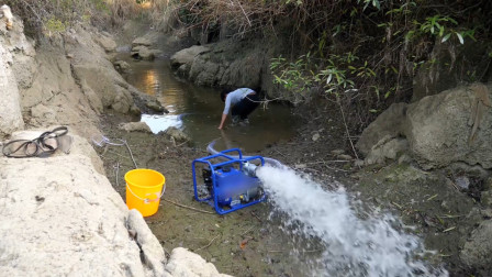 断流水塘动静很大,水还没有抽干就可以抓到鱼,最后可惜了