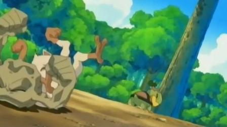 精灵宝可梦:皮卡丘跟嫩苗龟一起玩,它很强,一个打两个没问题!