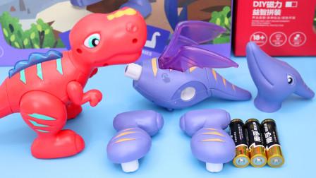 新买的恐龙零件 我们一起把它组装起来吧