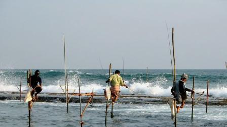 """国外最""""独特""""钓鱼方式,无需鱼饵,踩着高跷就能钓到鱼!"""