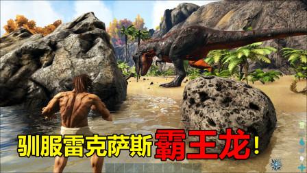 方舟12:我驯服了恐龙之王雷克斯霸王龙!结果却被我失手误杀了