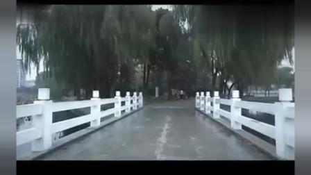 真情错爱电视剧第7集剧情看点