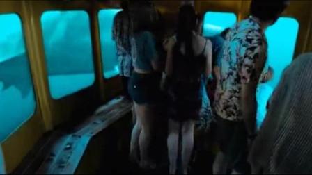 最新灾难猛片,照明弹怒射狂暴大白鲨,绝地反击鲨口逃生