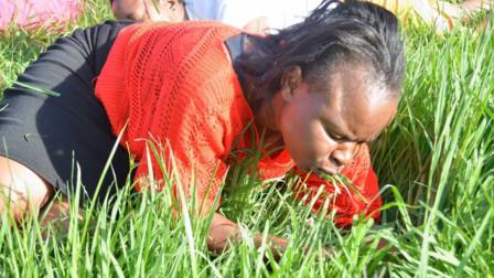 """世界最""""贫穷""""的国家,人们不种植粮食,一日三餐都""""吃草"""""""