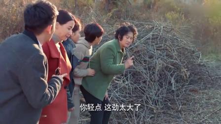 丈夫跟寡妇去后山挖黄精,被妻子误会率队去抓,结果脸丢大了