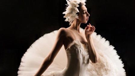 【视觉盛宴】世界上最美的黑天鹅与白天鹅变奏