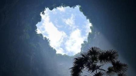 世界最大地下原始森林,面积约9.6万平方米,藏在我国一处天坑中
