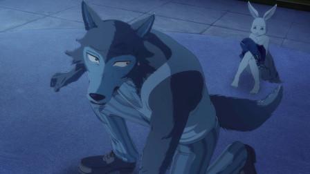 动物狂想曲:大灰狼爱上小白兔,为了争夺猎物,不惜挑战35只狮子