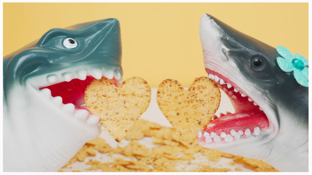 爱心形玉米片 鲨鱼爸爸试吃墨西哥零食