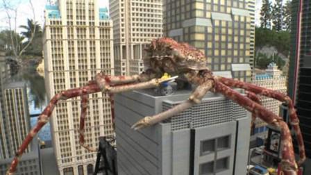 """世界最吓人的""""杀人蟹"""",体长足有一层楼高,但是却输给了吃货"""