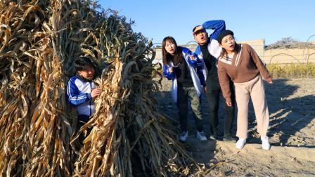 """二浪和同学们玩""""捉迷藏"""",为了不被同学发现,藏在玉米秸垛里!"""