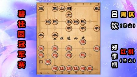 """郑惟桐:""""一分为二""""的象棋布局飞刀,看不懂就输棋了"""