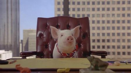 小猪为了不被做成香肠,努力成为了公司老板,一部搞笑动物电影