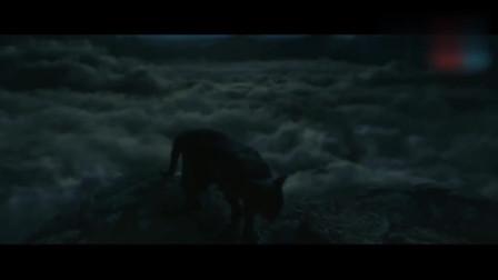 妖猫传:男子灵魂附身御猫,听到贵妃在棺里嘶吼,竟夺了皇上双眼