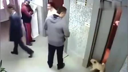 男子刚想上电梯突然发现不对劲他的反应太快了