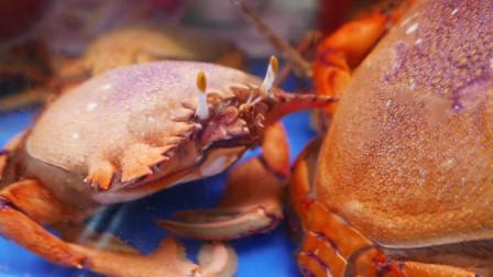 街头美食日本冲绳黄蟹海鲜